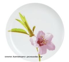 WATER COLOR тарелка обеденная 25 см